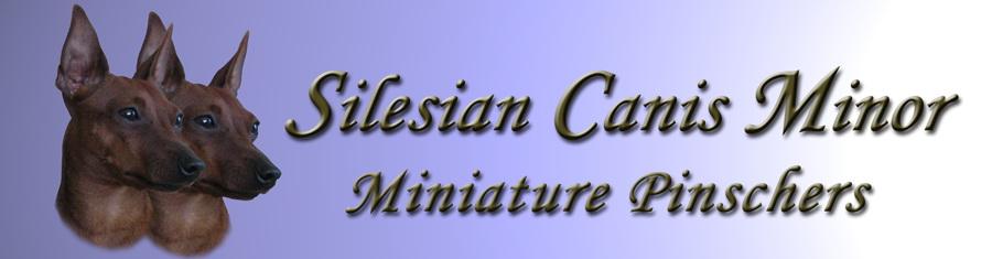 Leírás: http://www.minpins.hu/voltairebanner.jpg